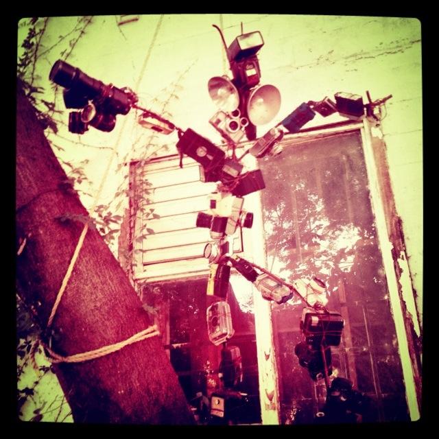 20120522-010245.jpg