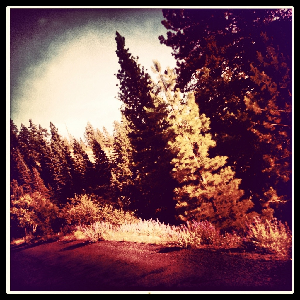 20120711-010743.jpg