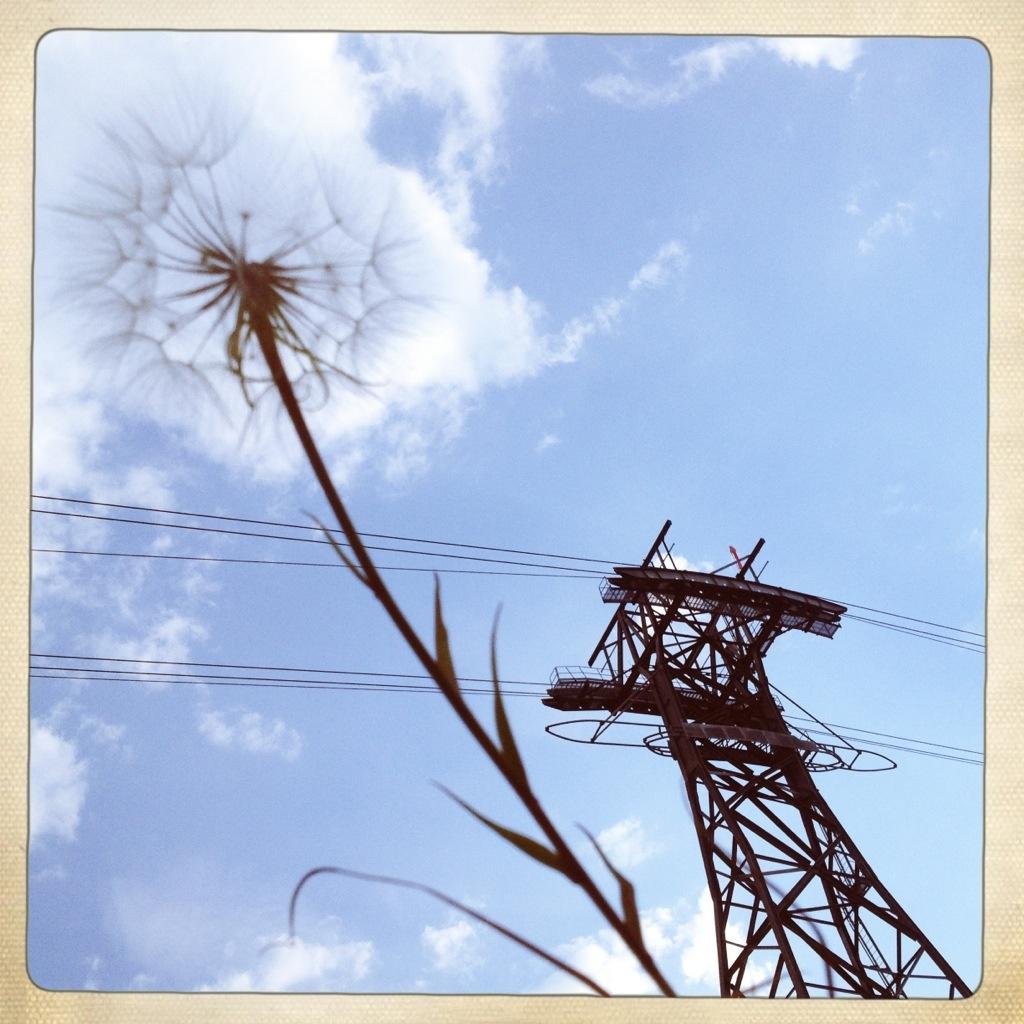 20120812-231051.jpg